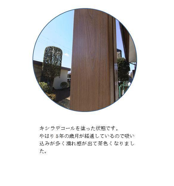 20130225210246.JPG